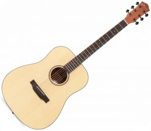 Donner DAG-1 low price acoustic