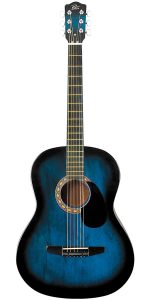 The Rogue Starter acoustic guitar review